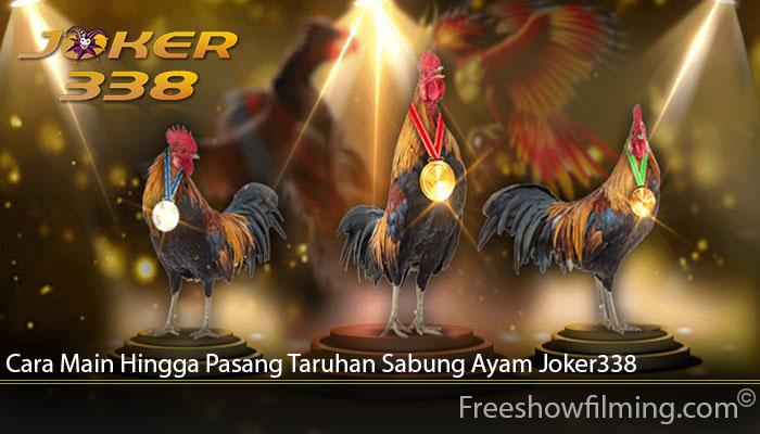 Cara Main Hingga Pasang Taruhan Sabung Ayam Joker338